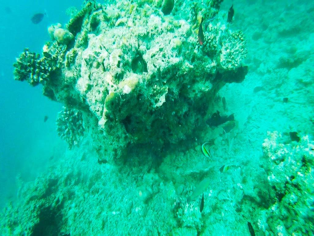 fondo marino gulhi
