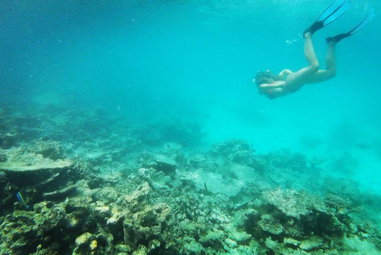 snorkel en maldivas